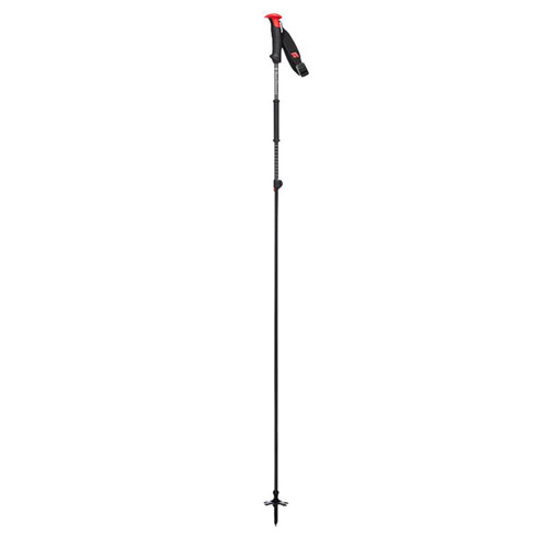 Razor Carbon Ski Pole