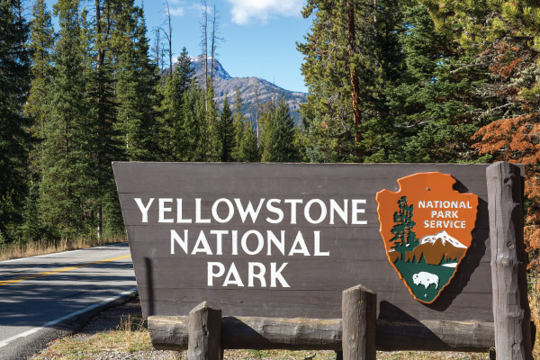 The 10 Best Hikes in Yellowstone National Park