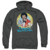 Image for The Love Boat Hoodie - Original Booze Cruise