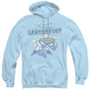 Image for Dexter's Laboratory What do you want? Hoodie
