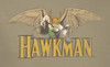 Image Closeup for Hawkman in Flight Youth T-Shirt