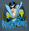 Image Closeup for Nightwing Youth T-Shirt