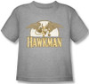 Image for Hawkman Fly By Kid's T-Shirt