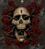 Image Closeup for Skull Head Turner T-Shirt