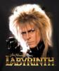 Image Closeup for Labyrinth Womens T-Shirt - Jareth