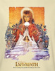 Image Closeup for Labyrinth Youth T-Shirt - Movie Poster