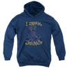 Image for I Dream of Jeannie Youth Hoodie - Paint