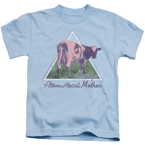 Image for Pink Floyd Atom Mother Hearth Pyramid Kid's T-Shirt