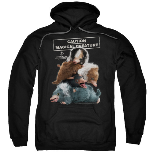 Image for Fantastic Beasts: the Crimes of Grindelwald Hoodie - Cuddle Puddle