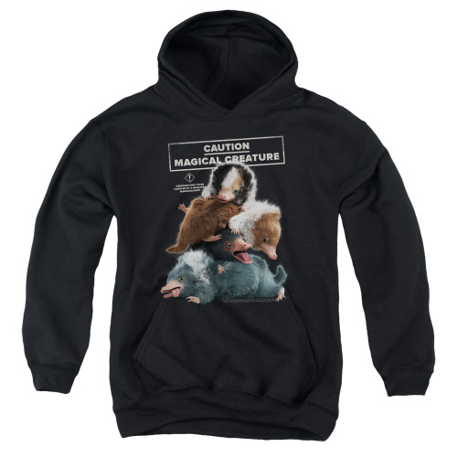 Image for Fantastic Beasts: the Crimes of Grindelwald Youth Hoodie - Cuddle Puddle