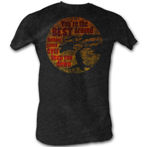 Image for Karate Kid T Shirt - You're the Best Around
