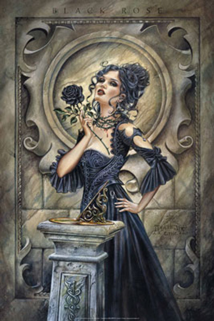Image for Alchemy Gothic Poster - Black Rose