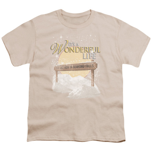 Image for It's a Wonderful Life Youth T-Shirt - Wonderful Story