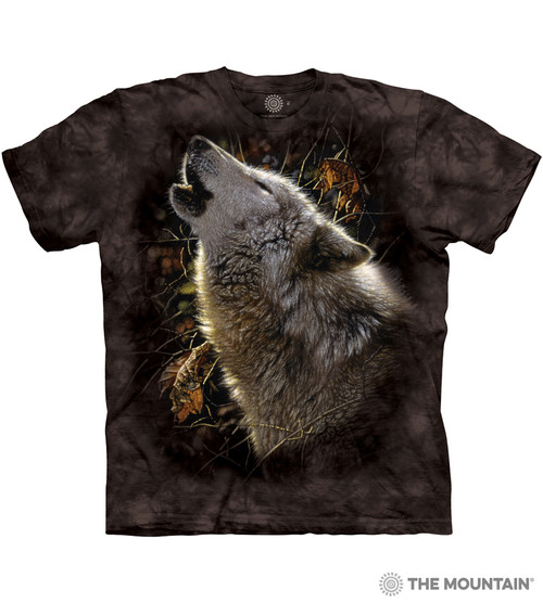 Image for The Mountain T-Shirt - Song of Autumn