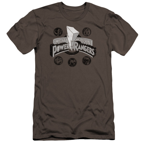 Image for Mighty Morphin Power Rangers Premium Canvas Premium Shirt - Power Coins