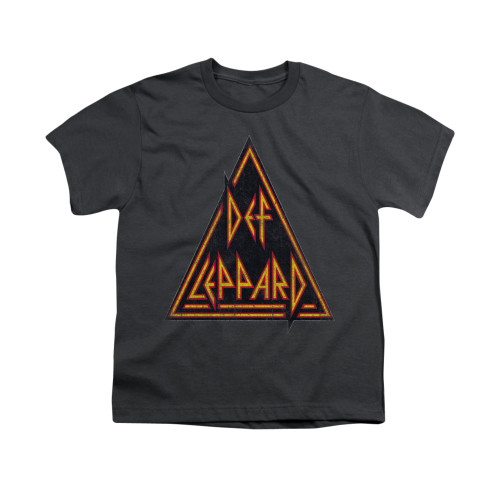 Image for Def Leppard Youth T-Shirt - Distressed Logo