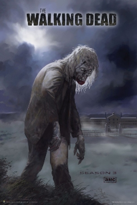 Image for Walking Dead Poster - Season 3