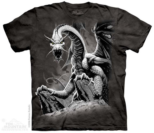 Image for The Mountain T-Shirt - Black Dragon