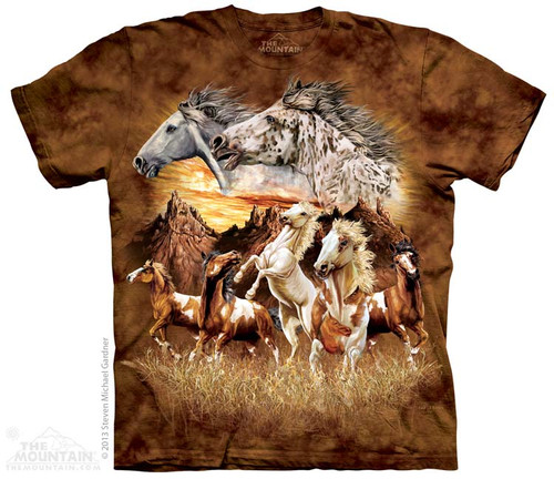 Image for The Mountain T-Shirt - Find 15 Horses