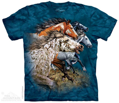 Image for The Mountain T-Shirt - Find 13 Horses