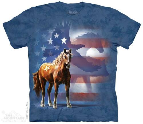 Image for The Mountain T-Shirt - Wild Star Flag
