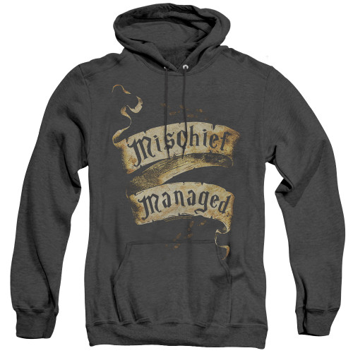 Image for Harry Potter Heather Hoodie - Michief Managed Ribbon