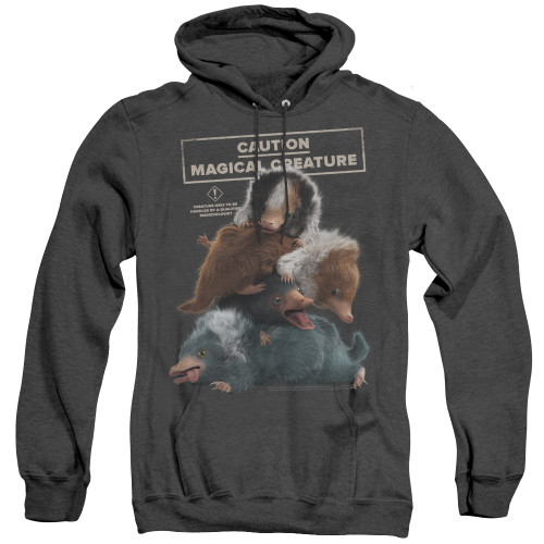 Image for Fantastic Beasts: the Crimes of Grindelwald Heather Hoodie - Cuddle Puddle