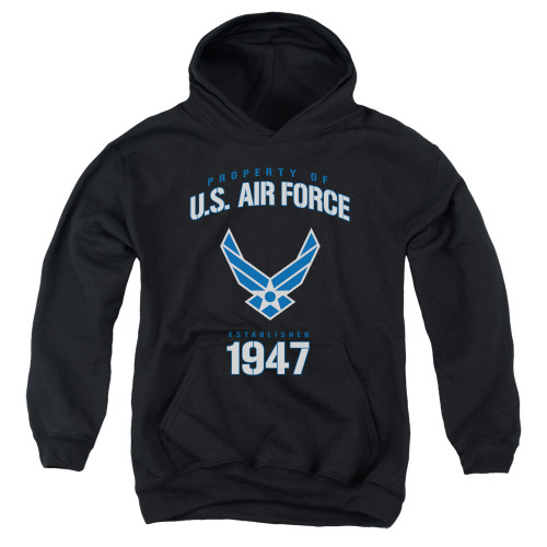Image for U.S. Air Force Youth Hoodie - Property of the United States Air Force