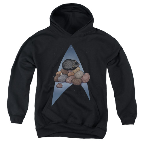 Image for Star Trek Cats Youth Hoodie - Five Year Nap