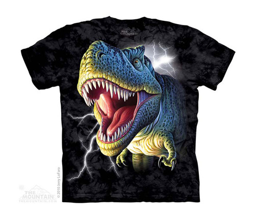Image for The Mountain Youth T-Shirt - Lightning Rex