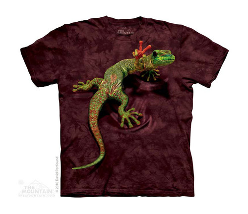 Image for The Mountain Youth T-Shirt - Peace Out Gecko