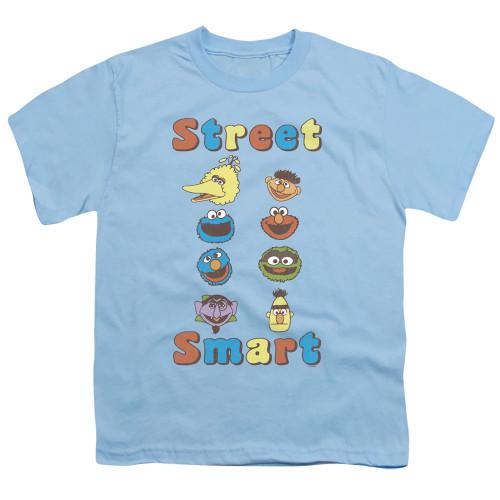 Image for Sesame Street Youth T-Shirt - Street Smart