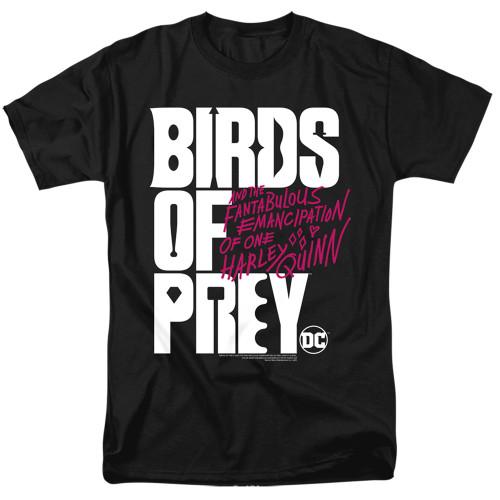 Image for Birds of Prey T-Shirt - Logo