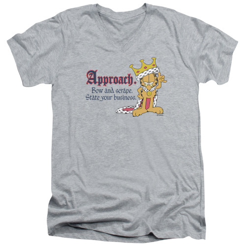 Image for Garfield V Neck T-Shirt - State Your Business