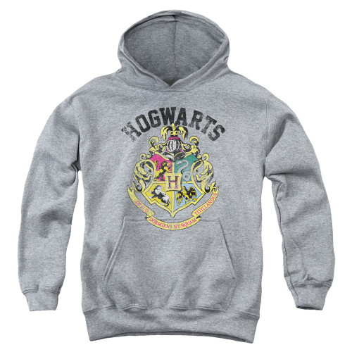 Image for Harry Potter Youth Hoodie - Crest of Hogwarts