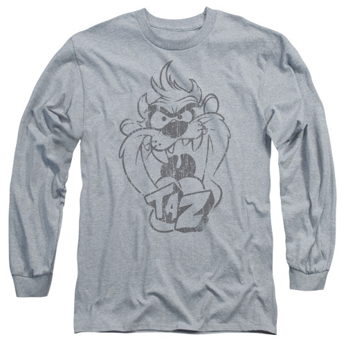 Image for Looney Tunes Long Sleeve T-Shirt - Faded Taz