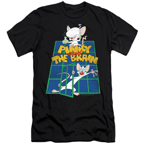 Image for Pinky and the Brain Premium Canvas Premium Shirt - Ol' Standard