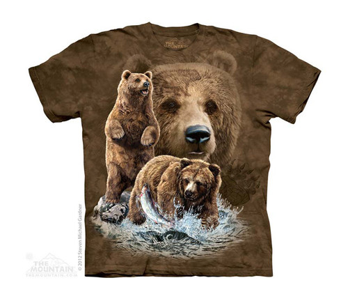 Image for The Mountain Youth T-Shirt - Find 10 Brown Bears