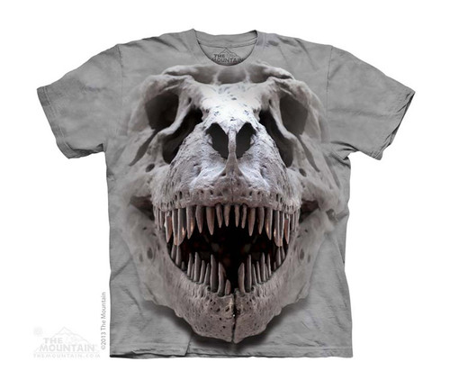 Image for The Mountain Youth T-Shirt - T-Rex Big Skull