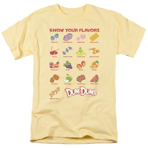 Image for Dum Dums T-Shirt - Flavors