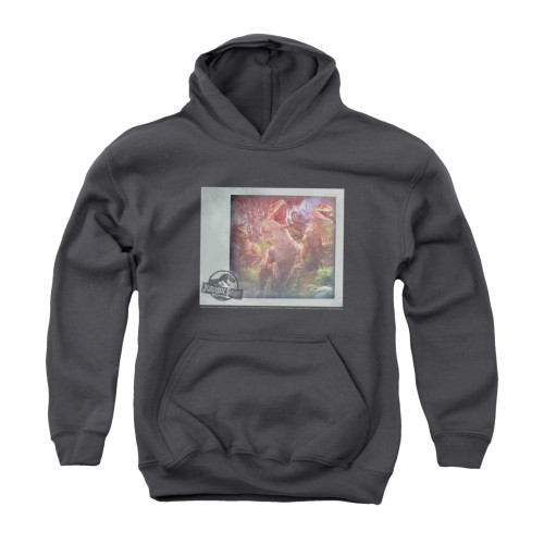 Image for Jurassic Park Youth Hoodie - A Trip