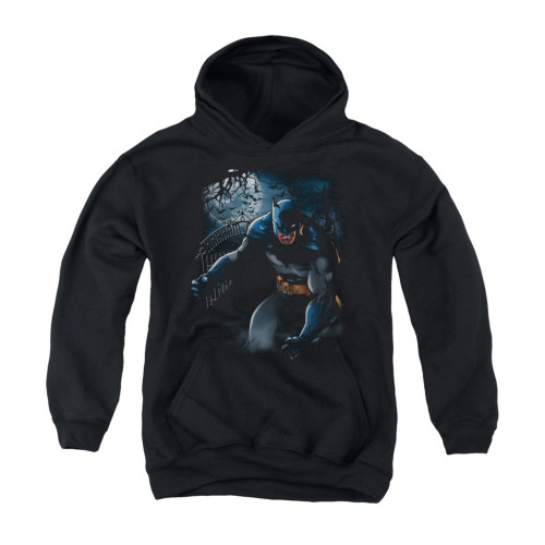 Image for Batman Youth Hoodie - Light Of The Moon