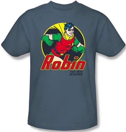 Image Closeup for Robin the Boy Wonder
