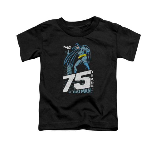 Image for Batman Toddler T-Shirt - Rooftop