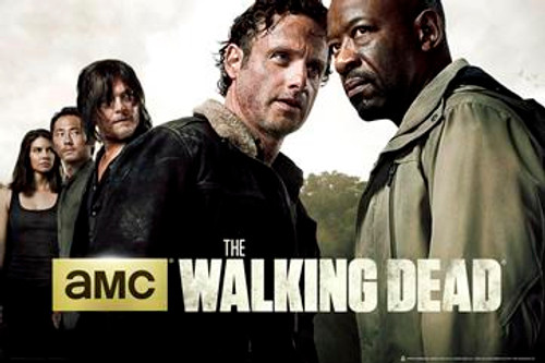 Image for The Walking Dead Poster - Season 6 Group