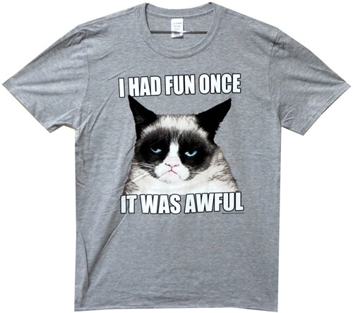 Image for Grumpy Cat I had Fun Once T-Shirt