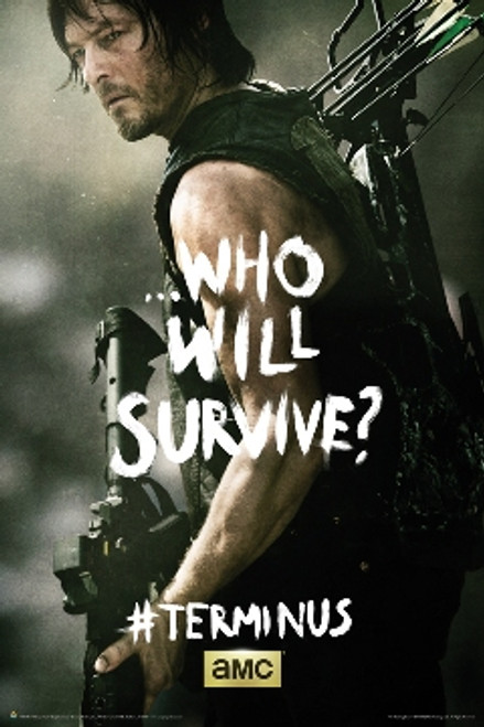 Image for Walking Dead Poster - Terminus Daryl