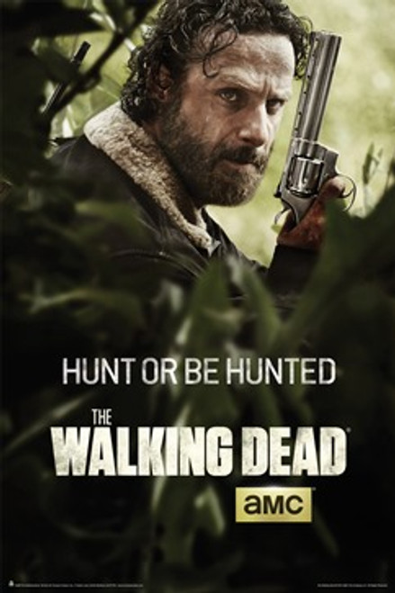 Image for Walking Dead Poster - Season 5 Rick Key Art