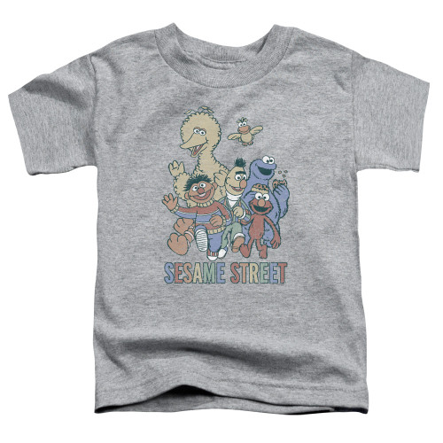 Image for Sesame Street Toddler T-Shirt - Colorful Group