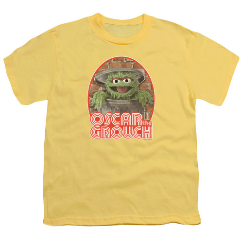 Image for Sesame Street Youth T-Shirt - Oscar the Grouch